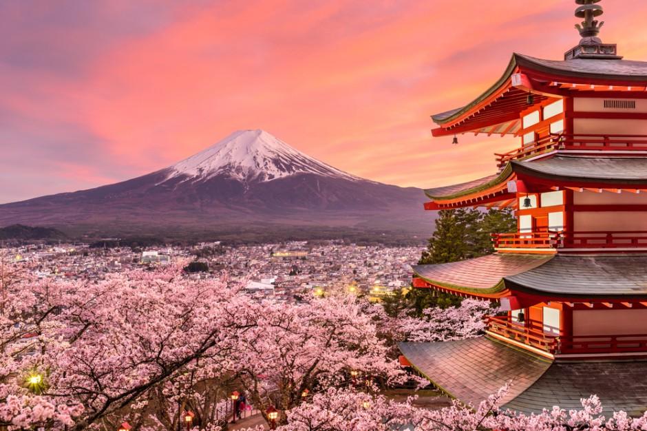Japonia: W Tokio zakwitły wiśnie