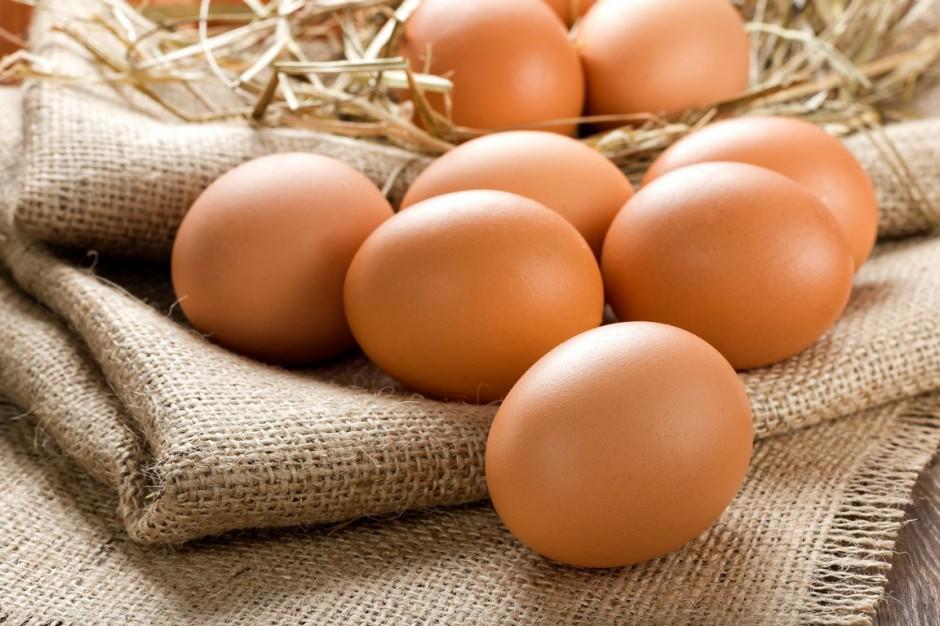 De Heus: Kolor skorupki i żółtka jaja nie wpływa na jego wartość odżywczą