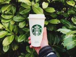 Starbucks zachęca do kubków wielokrotnego użycia