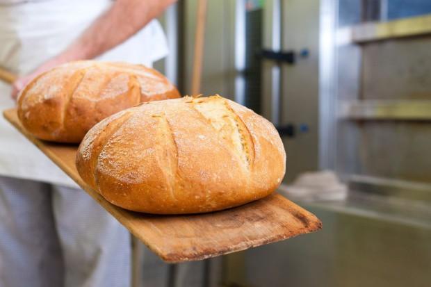 Sprzedaż pieczywa mrożonego w Europie rośnie. Możemy się spodziewać większego eksportu