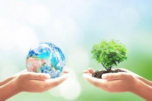 22 kwietnia to Dzień Ziemi