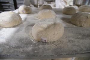 Putka: Piekarze dzielą się na ciastowych, stołowych i piecowych