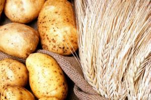 Raport IERiGŻ: W kwietniu 2018 r. poprawiła się koniunktura w rolnictwie