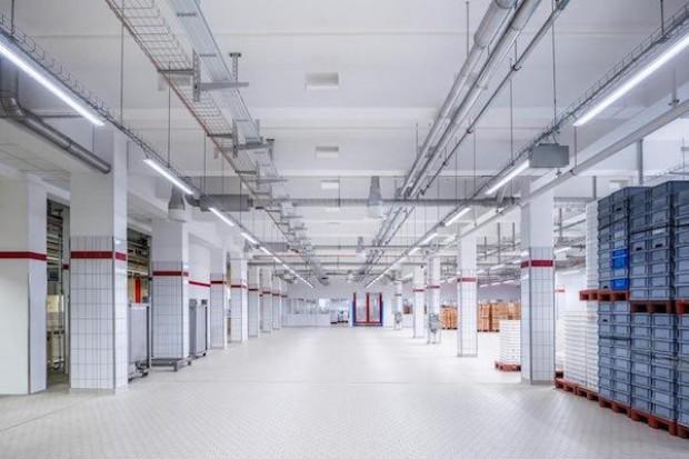 Niemiecka fabryka marcepanu z nowoczesnymi rozwiązaniami technologicznymi