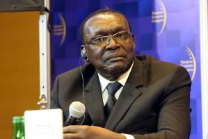 Zdjęcie numer 2 - galeria: EEC: Forum Gospodarcze Europa Centralna-Afryka. Afryka dziś i jutro [relacja]