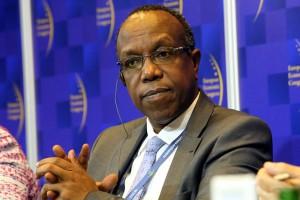 Zdjęcie numer 4 - galeria: EEC: Forum Gospodarcze Europa Centralna-Afryka. Afryka dziś i jutro [relacja]