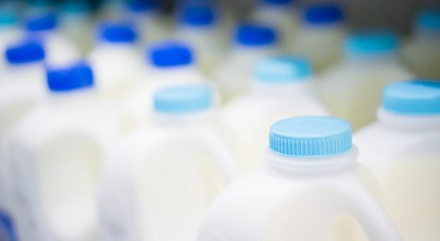 Lista 184 zakładów mleczarskich w Polsce - edycja 2018