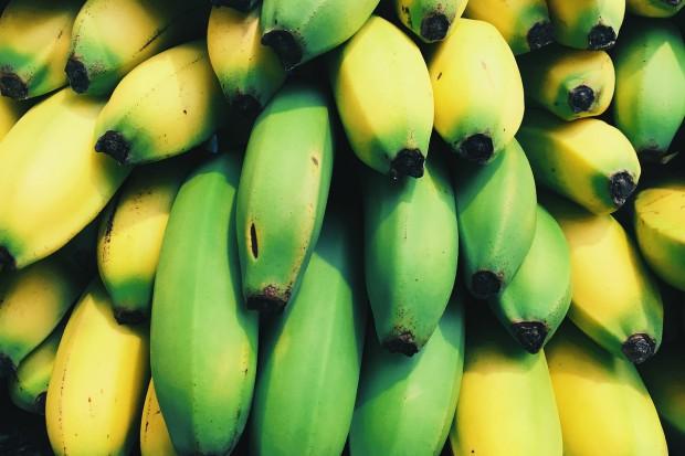Polska ważnym graczem na rynku bananów