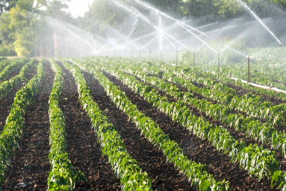 KE chce ułatwić ponowne używanie wody do nawadniania upraw