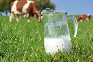 W kwietniu dalszy spadek cen mleka