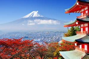 Japończycy rozpoczynają import drobiu z Turcji