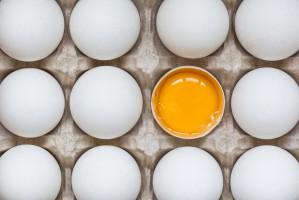 Rosjanie chcą eksportować swoje jaja do Unii Europejskiej