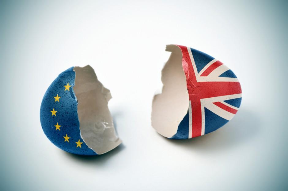 Brexit napędza wzrost inwestycji drobiarskich w Walii