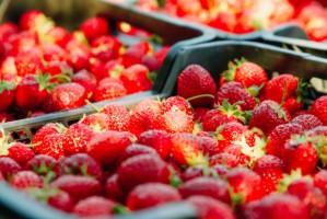 Ceny truskawek w hurcie niskie ale stabilne