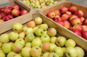 IERiGŻ - analiza rynku owoców