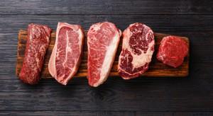 IERiGŻ: Niewielki wzrost eksportu wołowiny w I kwartale 2018