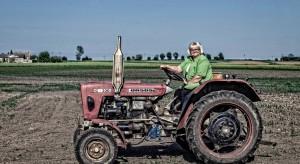 Rolnictwo ekologiczne to gwarancja zdrowia, szczęścia, a do tego również pieniędzy (wideo)