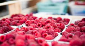 UOKiK zbada czy występuje zmowa cenowa na rynku owoców miękkich