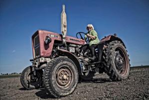 Rolniczka ekologiczna: Certyfikat to gwarancja jakości! Świadczy o tym, że jesteśmy transparentni