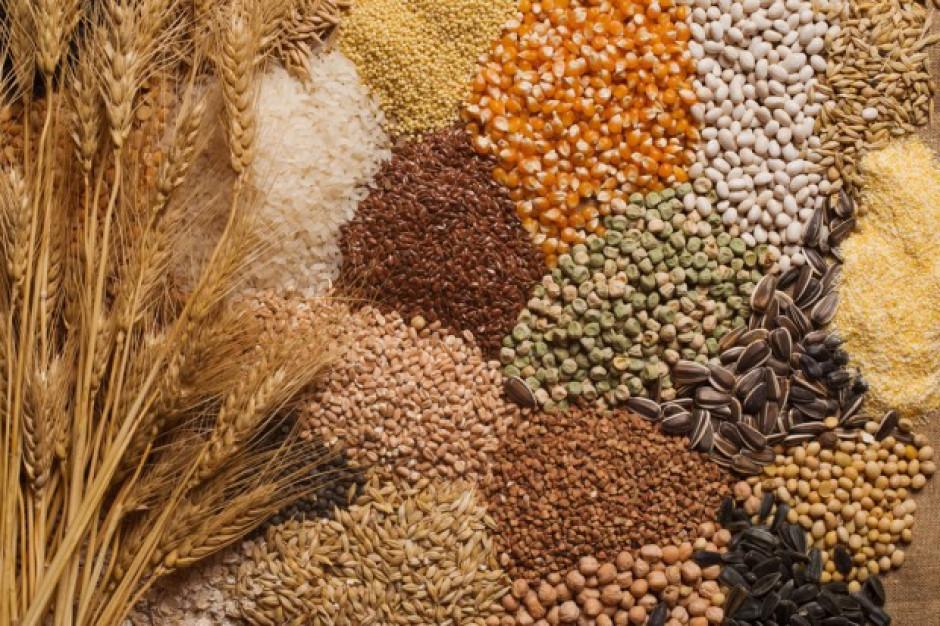 IERiGŻ: Raport o rynku zbóż
