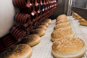 Zdjęcie numer 3 - galeria: Największa piekarnia Lantmannen Unibake w Nowej Soli oficjalnie otwarta (galeria zdjęć)