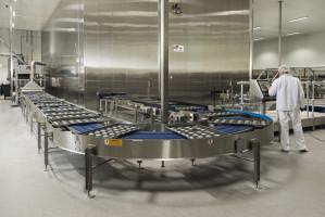 Zdjęcie numer 9 - galeria: Największa piekarnia Lantmannen Unibake w Nowej Soli oficjalnie otwarta (galeria zdjęć)