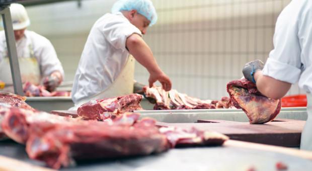 Pierwsze półrocze 2018 w branży mięsnej - podsumowanie