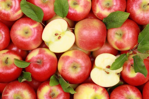 Sadownicy z Ukrainy obawiają się niskich cen za jabłka wczesnych odmian
