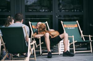 Zdjęcie numer 13 - galeria: Gastro Fajer: Czym wyróżnia się street food na Śląsku? (relacja foto + wideo)