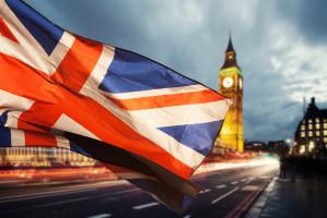 Wielka Brytania: Potrzeba nowych, dużych ferm drobiarskich
