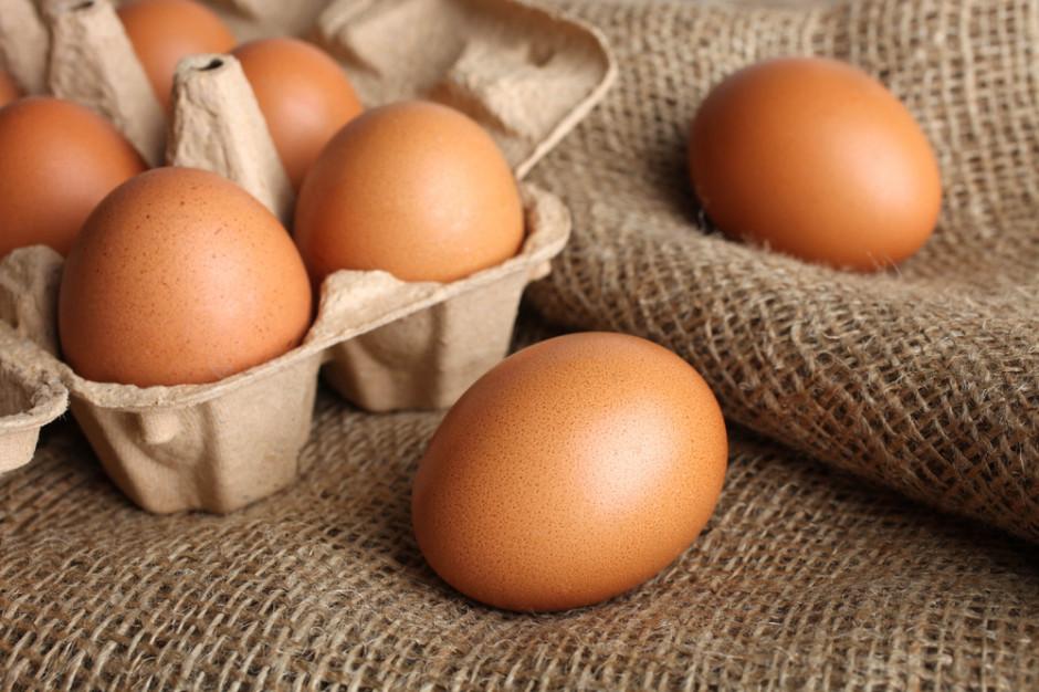 Jaja skażone salmonellą wycofywane ze sklepów