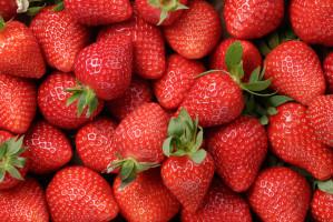 Szwecja: Sanepid potwierdza - polskie truskawki są źródłem wirusa