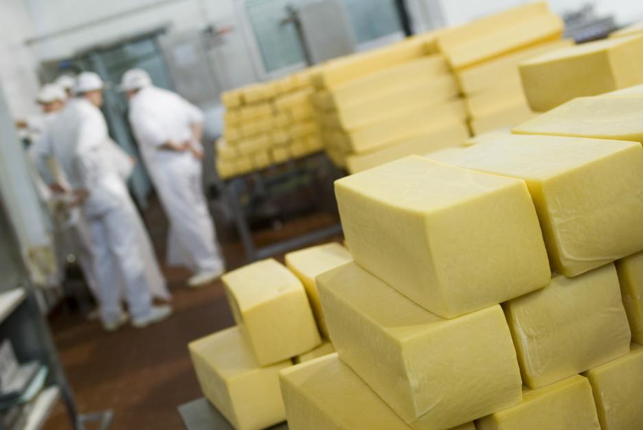Pierwsze półrocze 2018 r. w branży mleczarskiej - podsumowanie