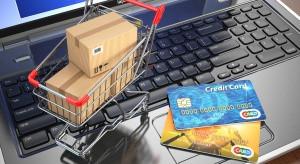 DGP: Państwowe instytucje będą mogły blokować strony nielegalnych e-sklepów