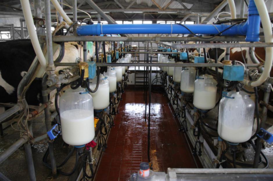 Rentowność mleczarstwa jest poniżej 2 proc.