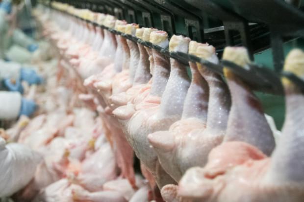 Unia Europejska nie zmienia stanowiska w sprawie brazylijskiego drobiu