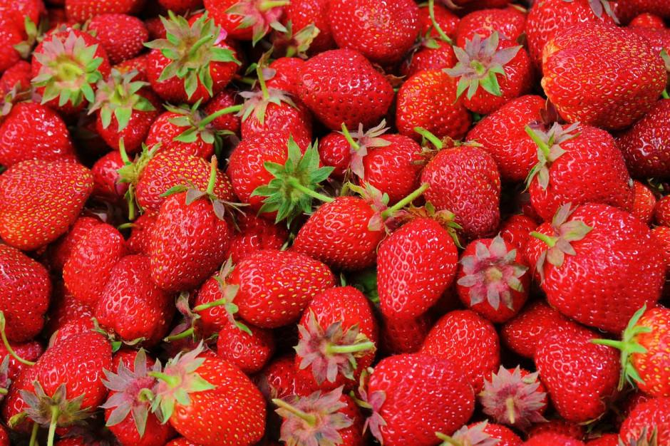 UOKiK wszczął postępowanie przeciw spółce T.B. Fruit Polska skupującej owoce