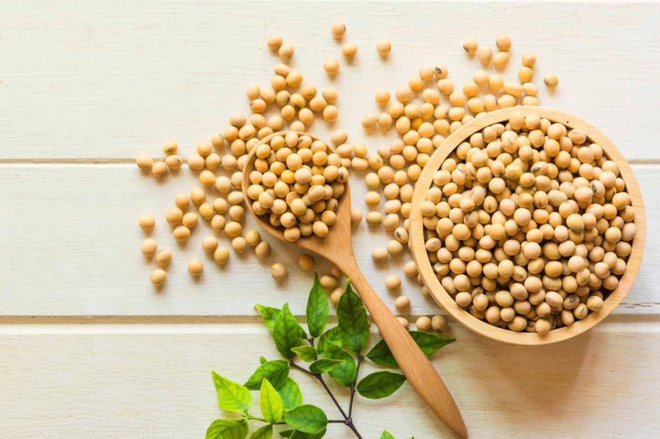 Naukowcy: Dieta bogata w soję może zwiększać siłę kości u kobiet
