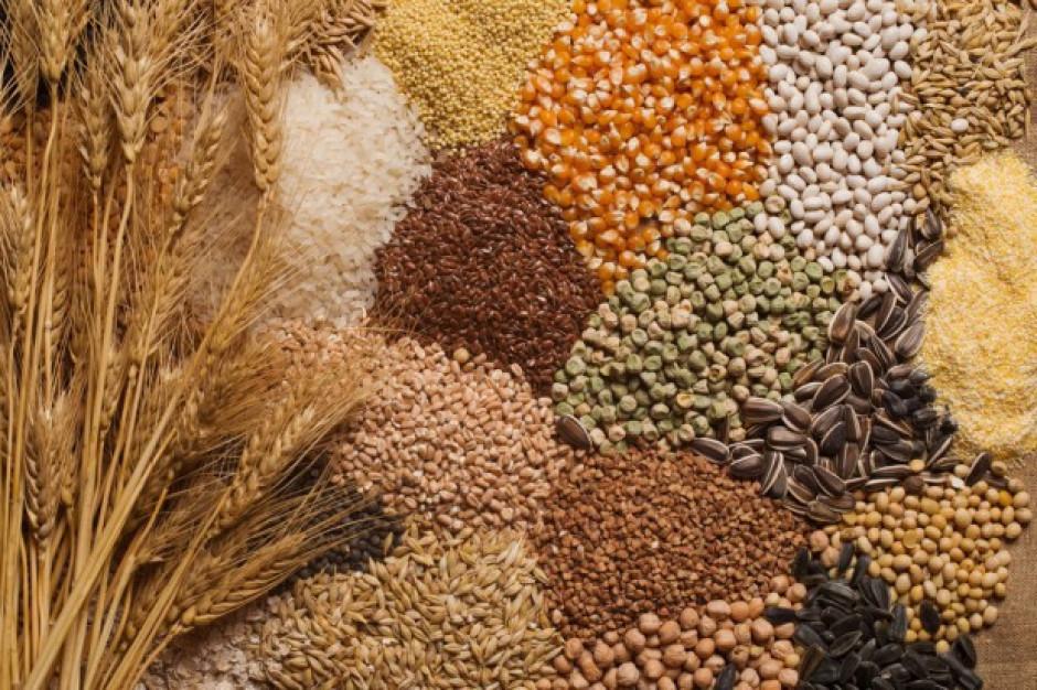 Ceny produktów rolnych podrożały o 1,5 proc. w lipcu br. - GUS