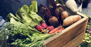 """NaturPlon: Produkty """"bio"""" wcale nie są droższe, tylko konwencjonalne za tanie (wywiad)"""