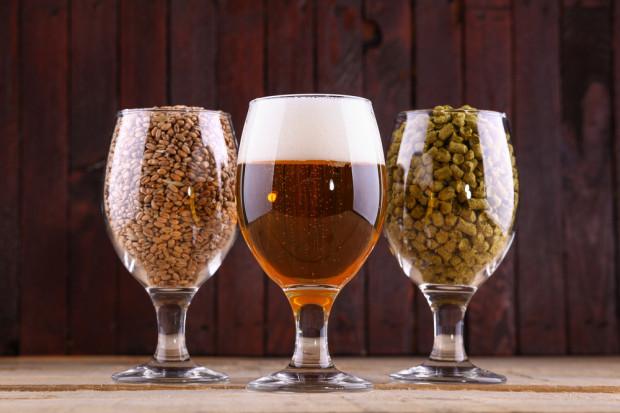 GUS: W 2017 r. produkcja piwa i jej wartość spadła. Produkcja słodu w górę