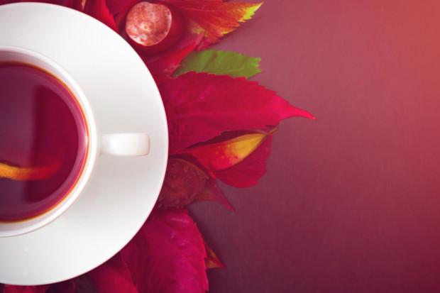 5 trendów na rynku herbaty na 2019
