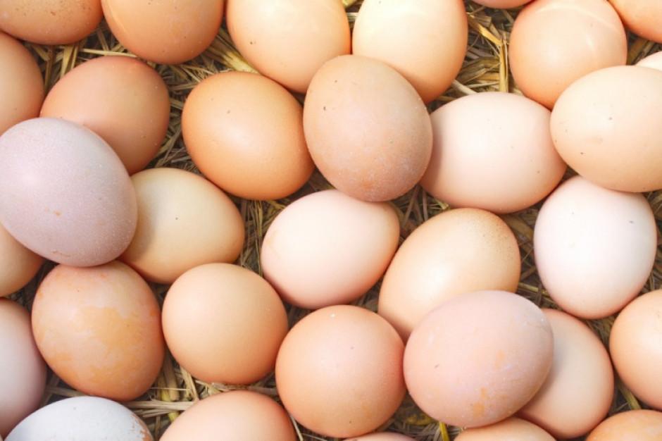 Coraz niższe marże na jajach w rozmiarze M i S