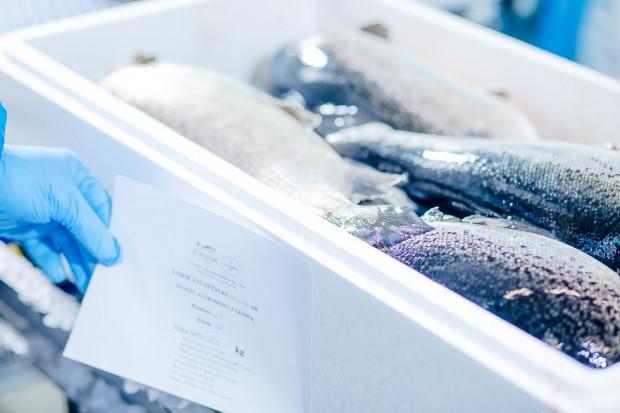 Jurassic Salmon - Takiej hodowli łososia jeszcze w Polsce nie było