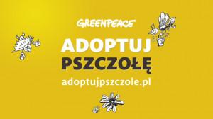 """Rusza szósta edycja akcji """"Adoptuj pszczołę"""""""