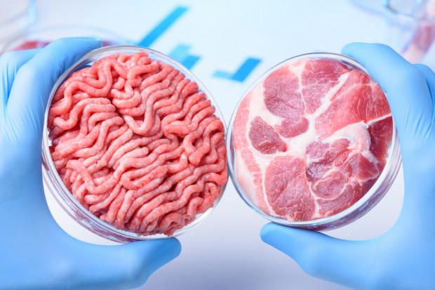 Mięso z laboratorium alternatywą dla uboju zwierząt?