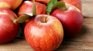 Polskie jabłka za drogie dla Kazachstanu
