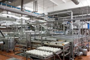 Przemysł 4.0 nie dla mleczarstwa?