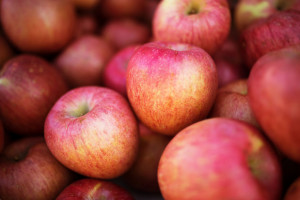 Ewa Bis: Skala eksportu polskich owoców i warzyw jest ogromna