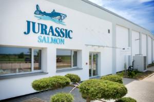 Jurassic Salmon: Nasz łosoś to odpowiedź na rosnący popyt na ryby przy kurczących się zasobach